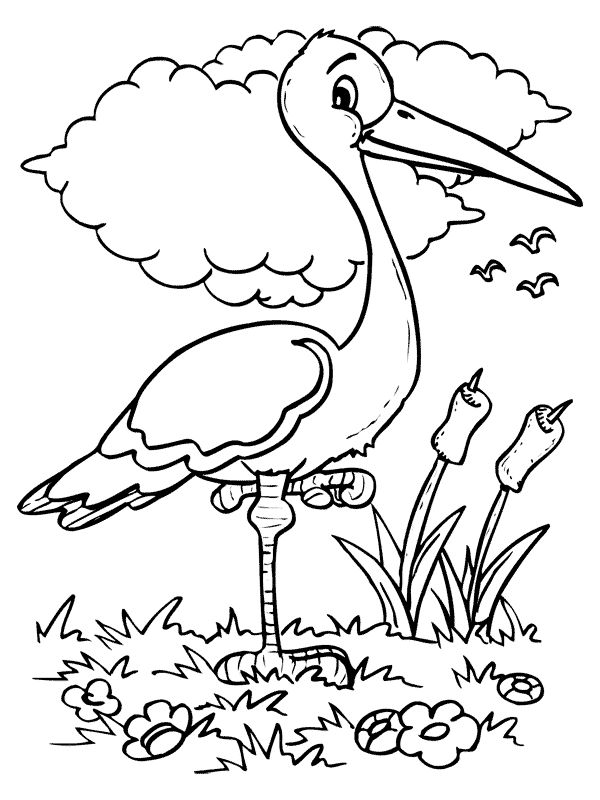 Pin By Perihan Ay On Animal Patterns Bird Coloring Pages Coloring Pages Fall Coloring Pages