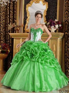 5fec9a7b629 2013 Spring Green Sweetheart Flowers Organza Quinceanera Gown Dresses