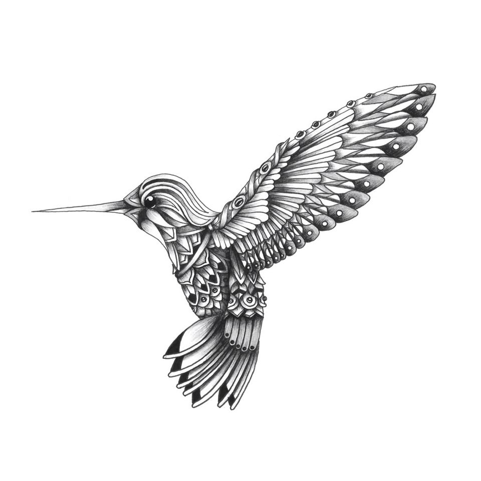 Ornate Colibrí on Behance | Grown Up Coloring Book Pages | Pinterest ...