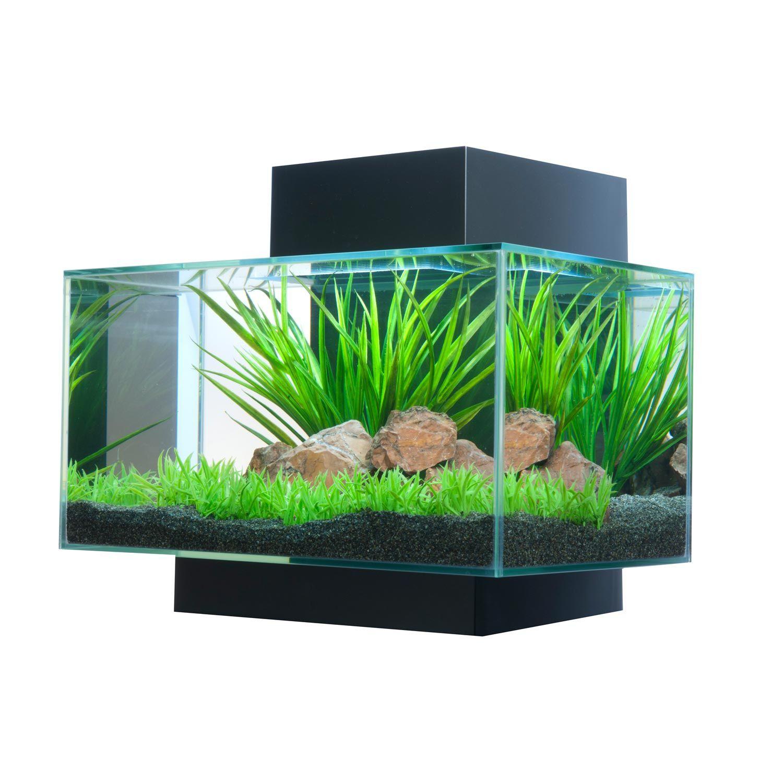 Fluval Edge Aquarium Kit In Black
