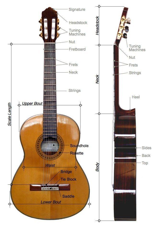 Classical Guitar Parts Guitar Guitar Lessons Classical Guitar