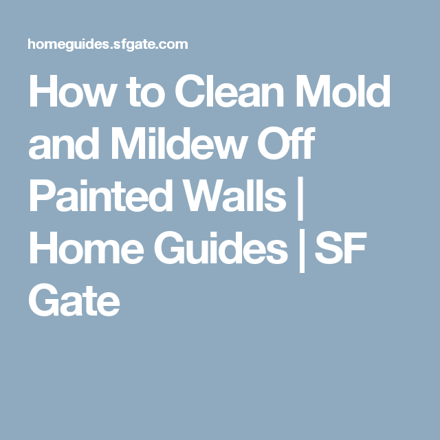 How to Clean Mold and Mildew Off Painted Walls ...