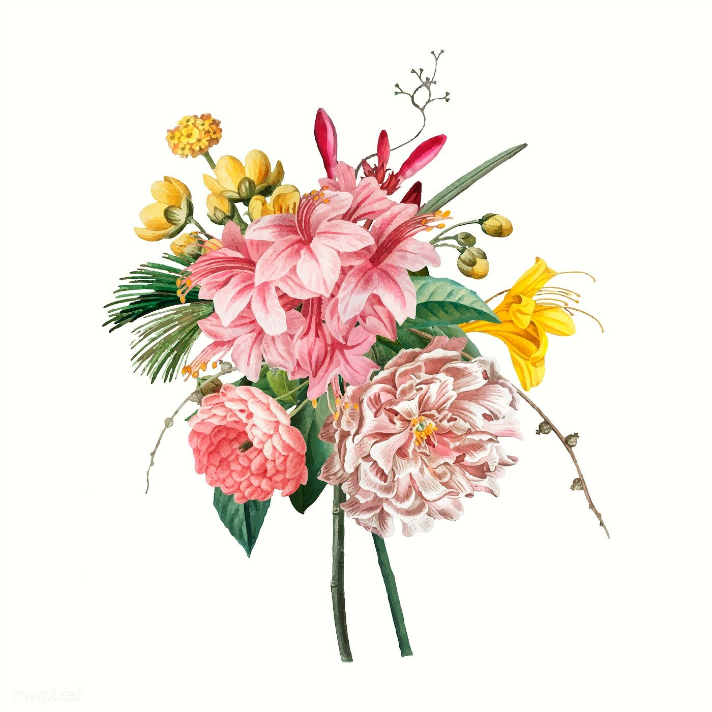 Colorful Blooming Vintage Flowers Vector Free Image By Rawpixel Com Vector Flowers Vintage Flowers Flower Illustration