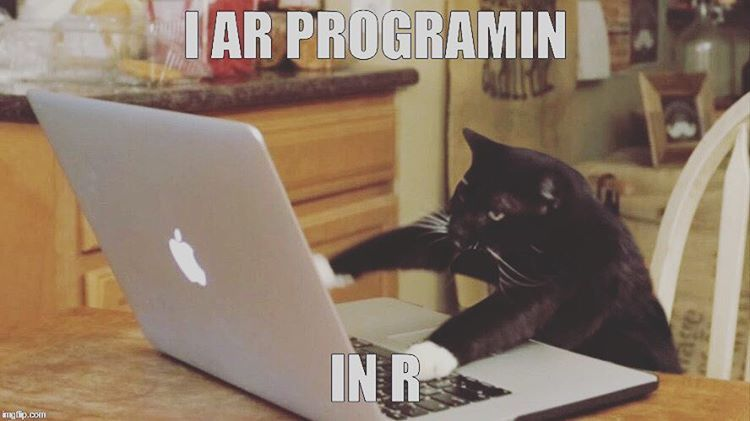 programmer life tech startup lifestyle ruby rails javascript