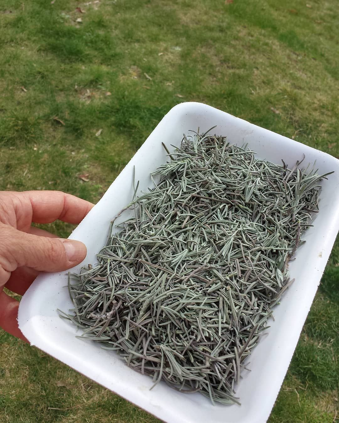 Here Are The Best Soil Mix For Raised Beds How to dry