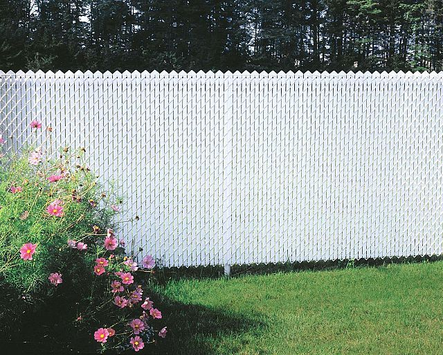 Chain Link Fencing White Inserts Chain Link Privacy