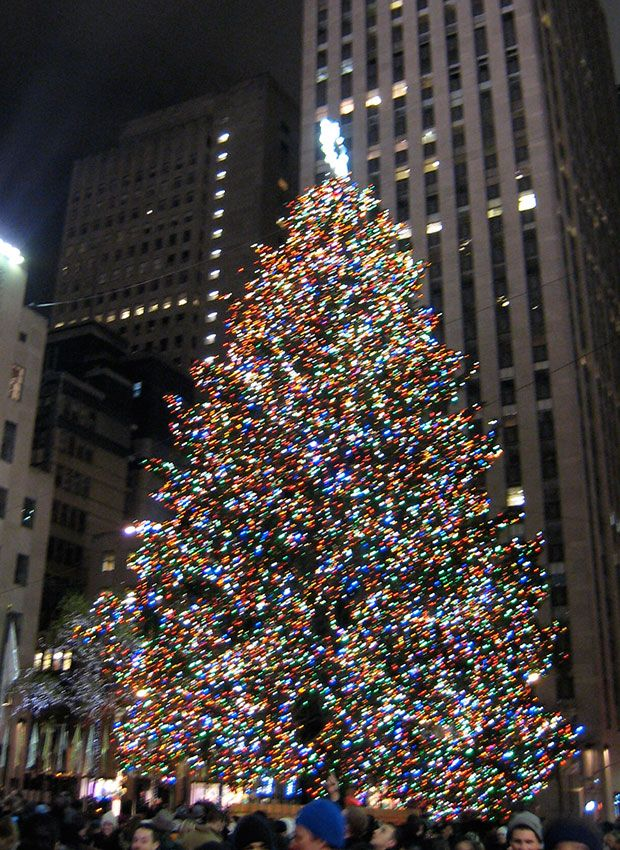this is what the rockefeller christmas tree looked like when you were born christmas tree rockefeller center christmas tree christmas pinterest