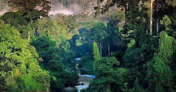 A Civilização Perdida da Amazônia