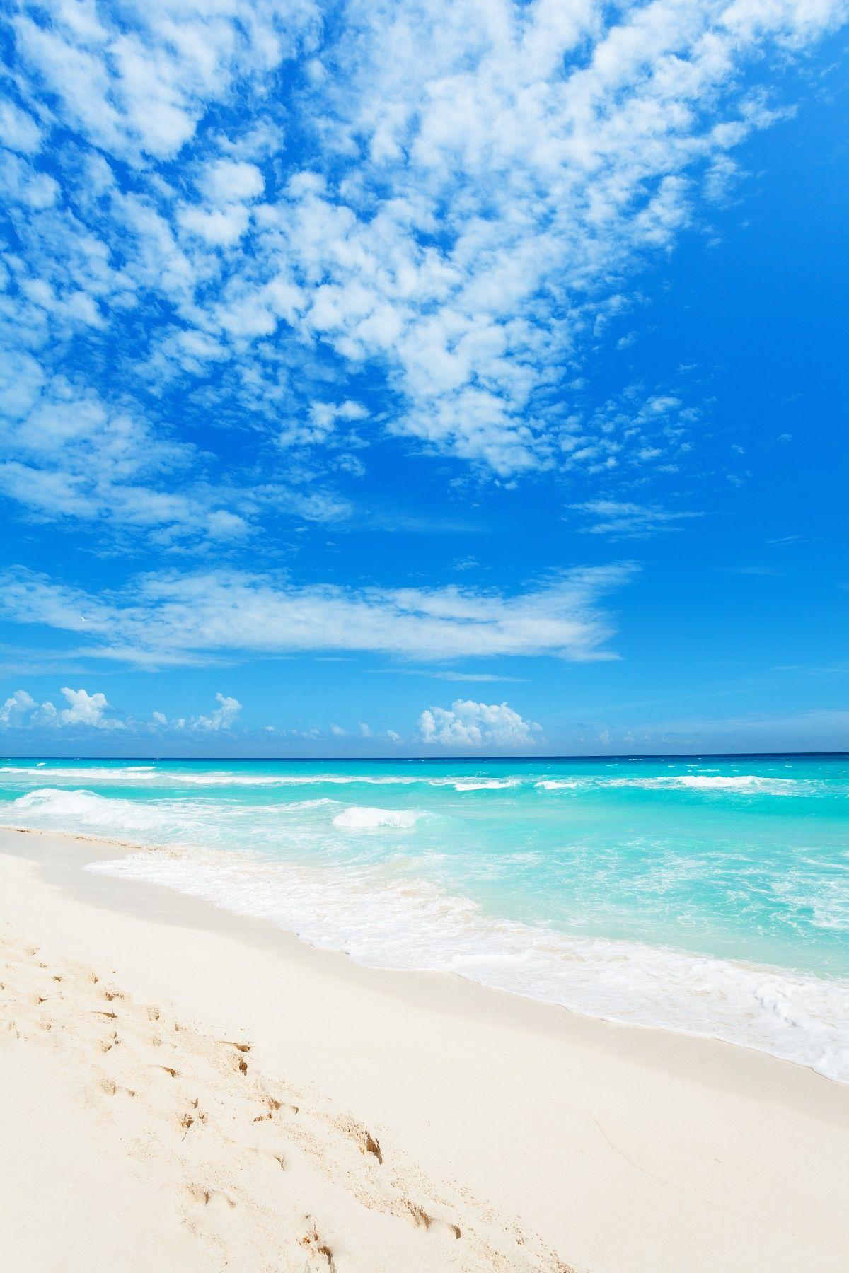 4 Top Beaches In Cancun Cancun Beach Pictures Cancun Beaches Cancun Mexico Beaches