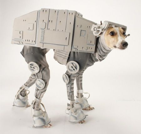 24f1f8c65fe4 This is incredible! Dog dressed as the robot camel thing from Star ...