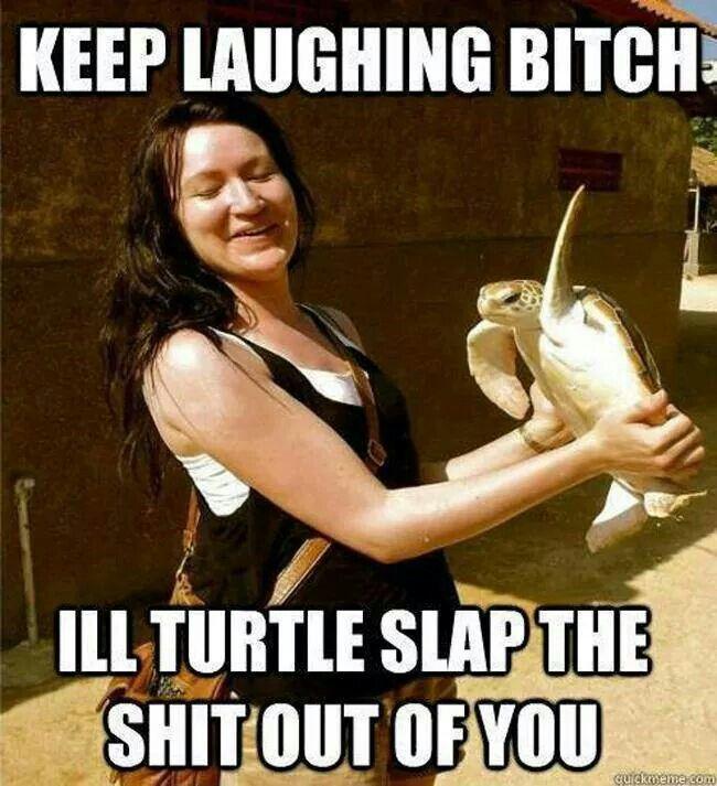 Turtle slap!