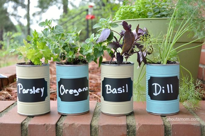 DIY Kitchen Herb Garden Gift Idea | Kitchen herb gardens, Herbs ...