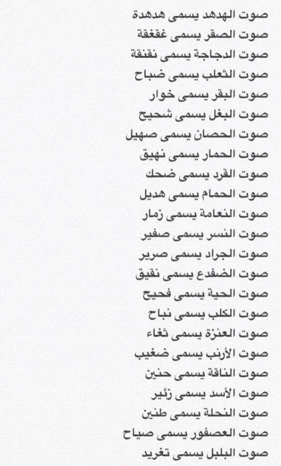 Pin By Mahmoud Dakroury On معلومات Quotes For Book Lovers Beautiful Arabic Words Learn Arabic Language