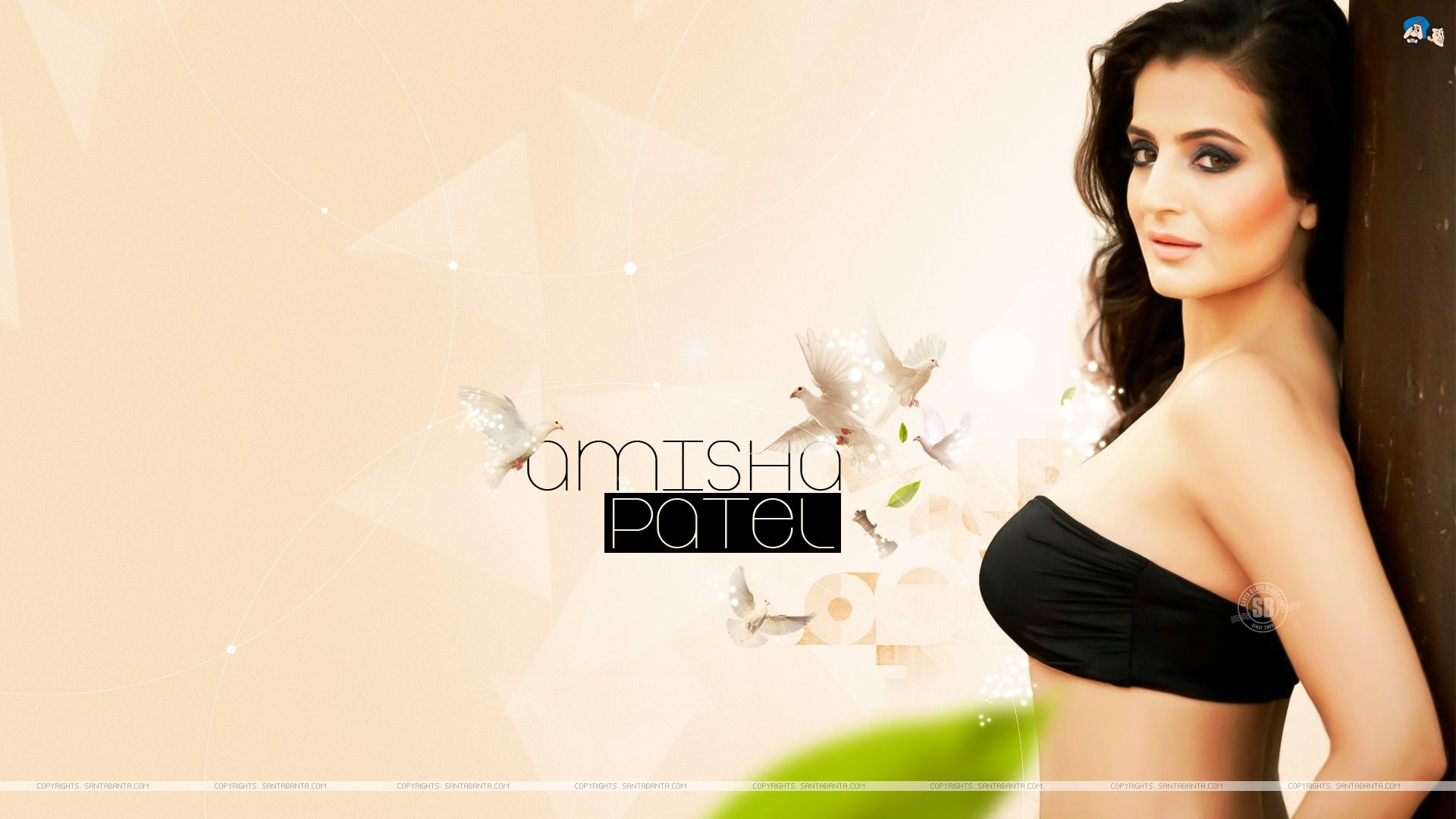 amisha patel hot hd wallpaper #186 | 0176 | pinterest | hd wallpaper