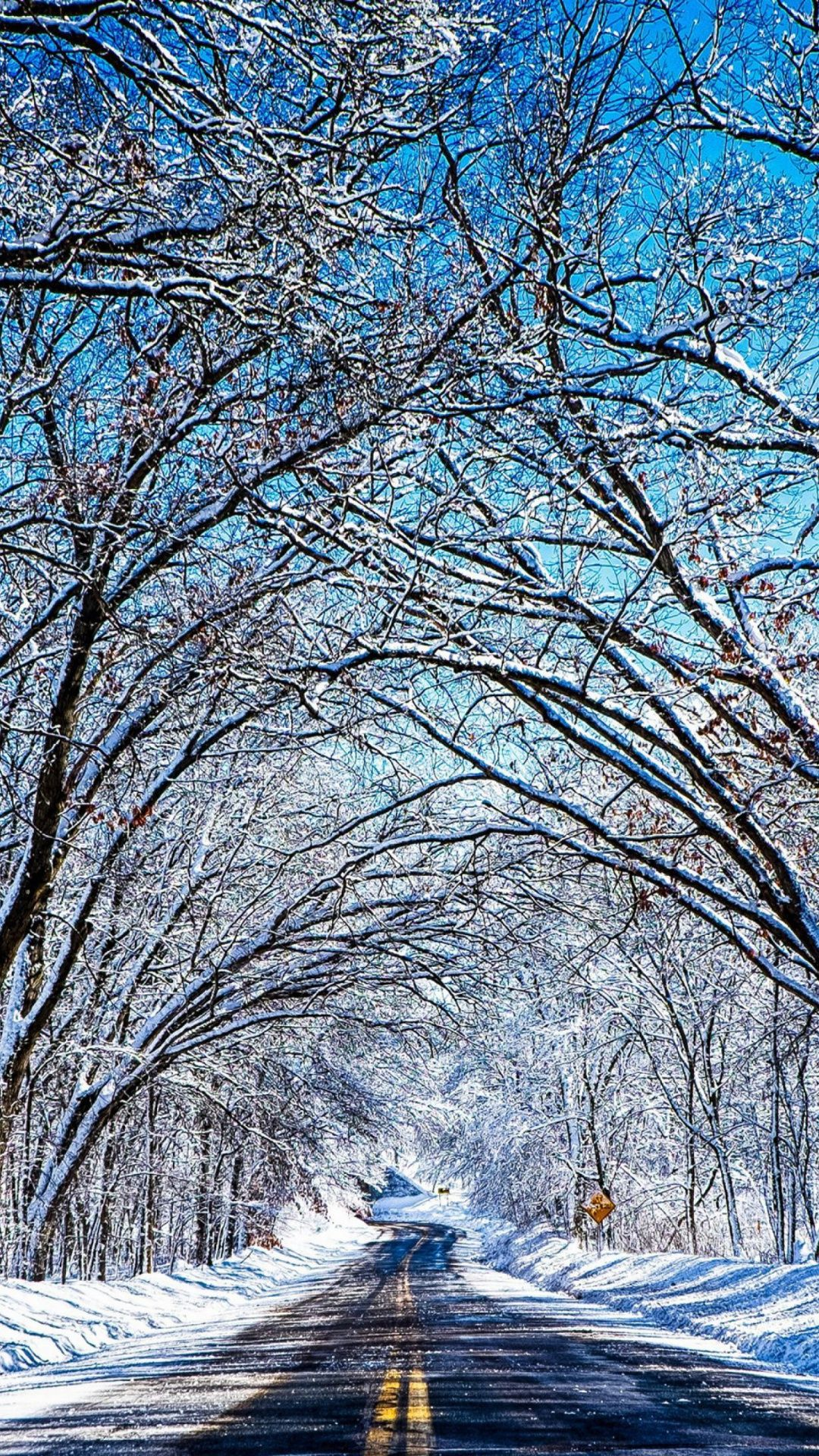 Road Tree Winter Desktop Backgrounds Roads In 2019