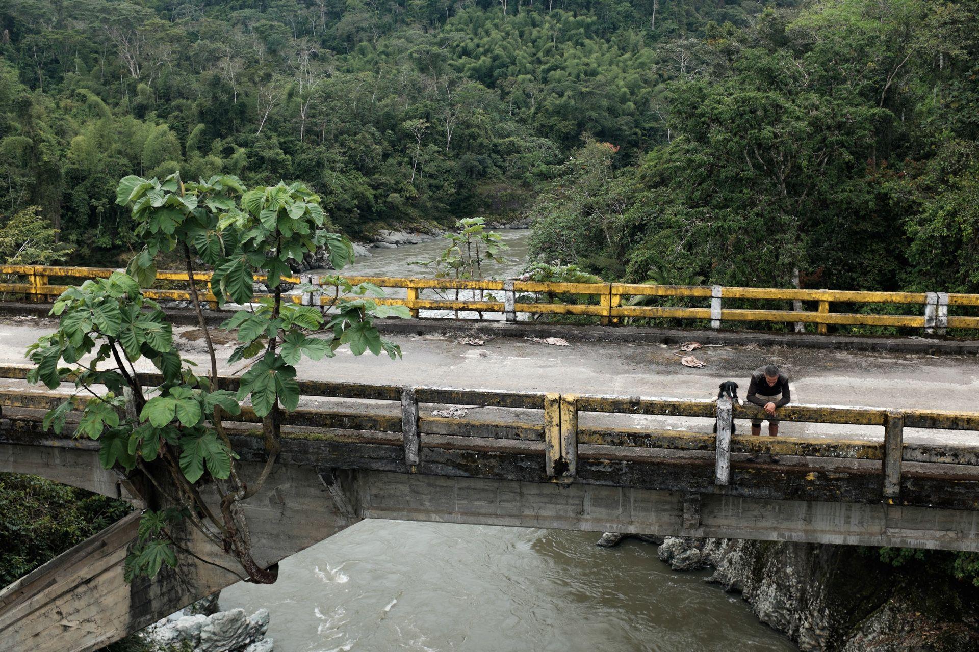 Troncal Amazónica - Like dog like master... #Ecuador #cycletouring #travel #adventure