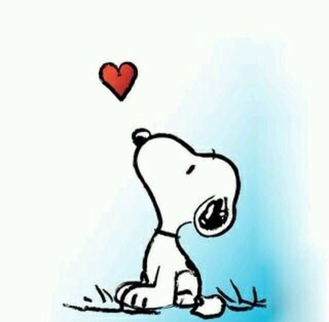 Snoopy heart... | Snoopy quotes, Snoopy, Snoopy pictures
