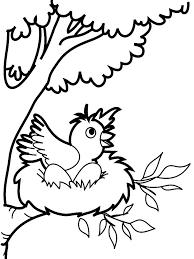 Resultado De Imagen Para Las Aves Dibujos Pajaros Para Colorear Dibujos De Pajaro Dibujos
