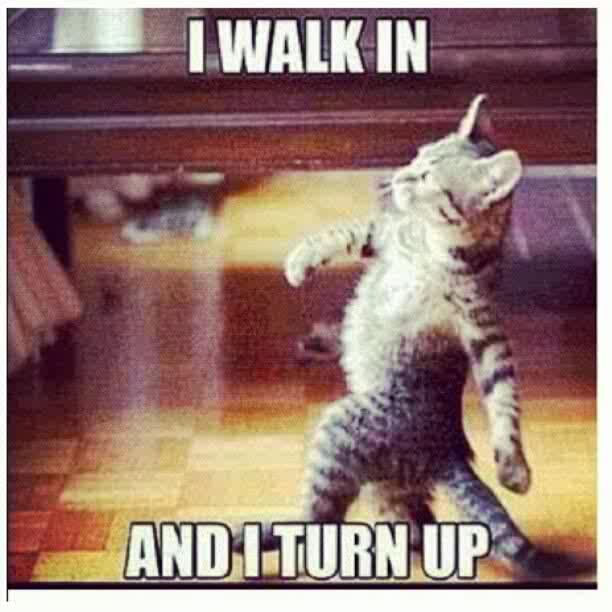 tun up lol