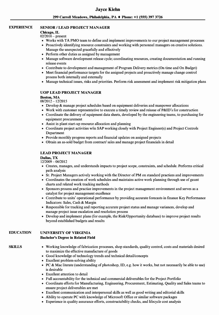 Project Management Job Description Resume Unique Lead