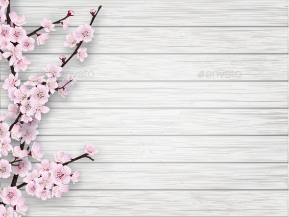 Cherry Pink Flower On White Old Wood Background Pink Flowers Wedding Vector Art Pretty Wallpaper Iphone