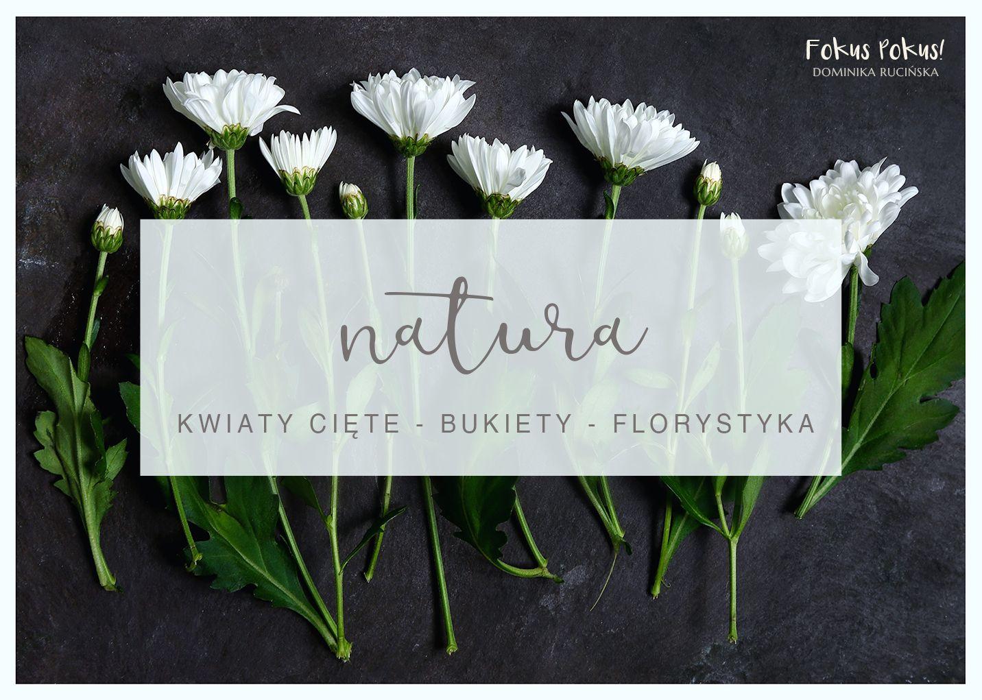 Wizytowka Kwiaciarnia Florystyka Businesscard Florists Kwiaciarnia Wizytowki Identyfikacjawizualna Logo Place Card Holders Place Cards Cards