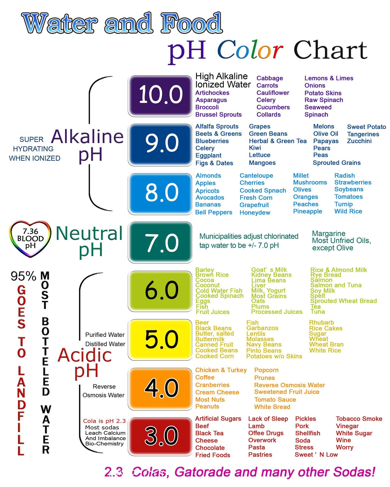 Water And Food Ph Color Chart Print 5x7