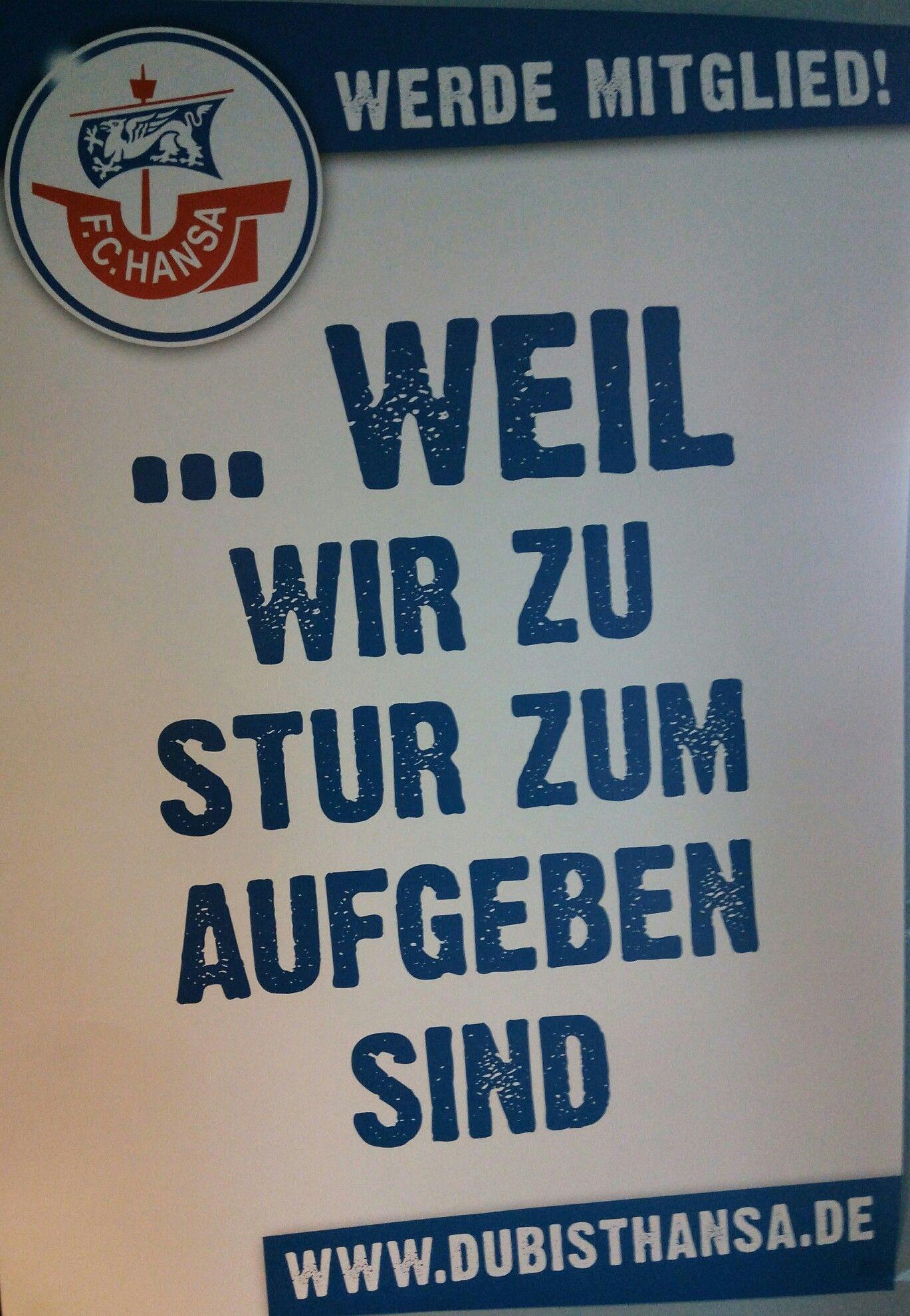 Ergebnisse Hansa Rostock