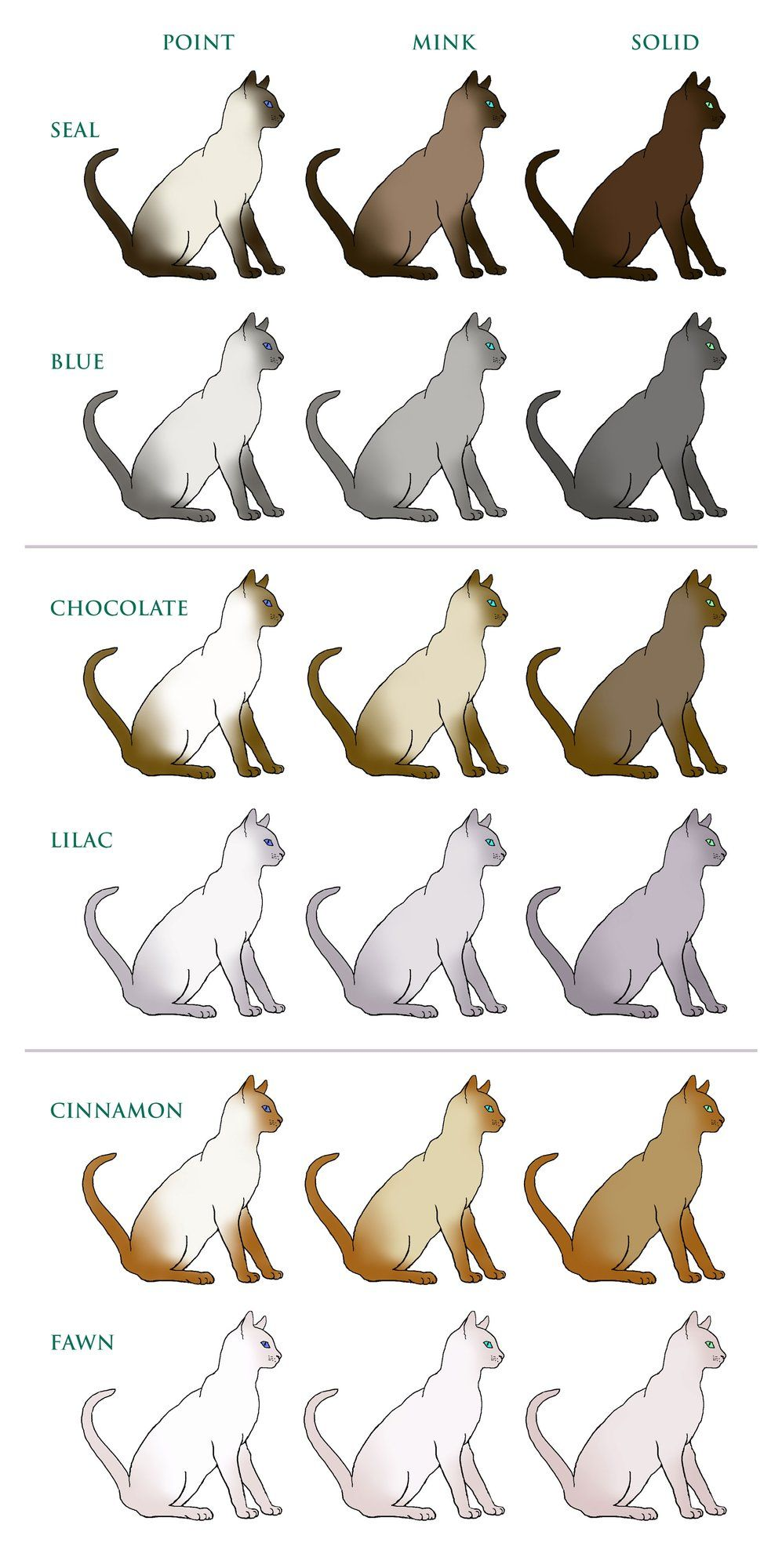 Coat Colour And Pattern Tonkinese Cats Kittens Queensland Tonkinese Cat Cat Colors Burmese Cat