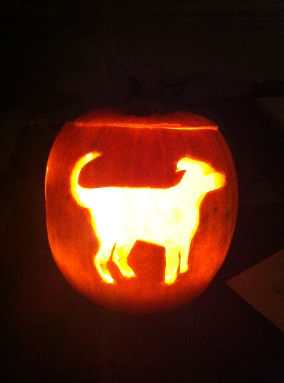 Halloween pumpkin dobermann dog carving my style