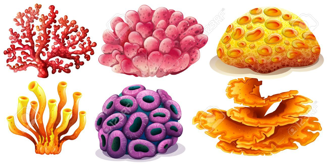 31+ Coral reef clipart free info