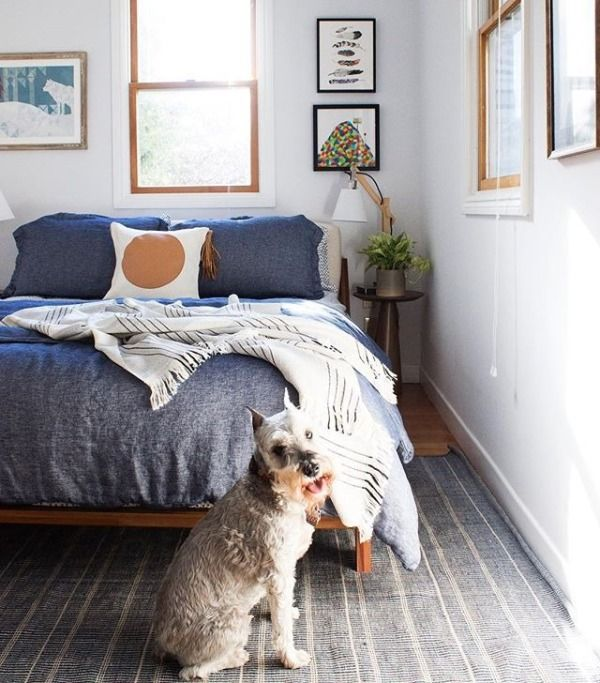 Finished this guest bedroom just in the nick of time, a sanctuary for visiting guests. More importantly it's Cuzco approved. See the before/after on insta stories! #bannerdaysf