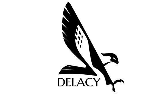 Faulcon delacy car decal elite dangerous