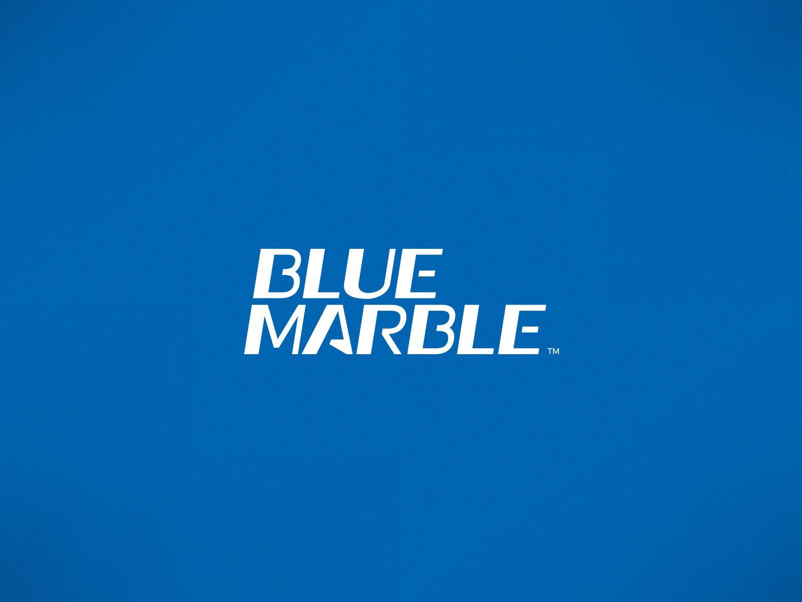 Blue Marble Logotype Design Logotype Design Blue Marble Logo Design