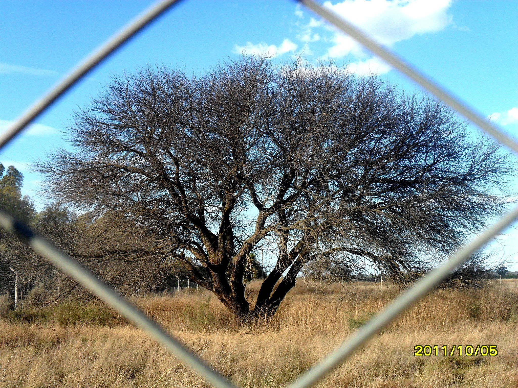 encuadre natural | Encuadre | Pinterest | Natural y Amar