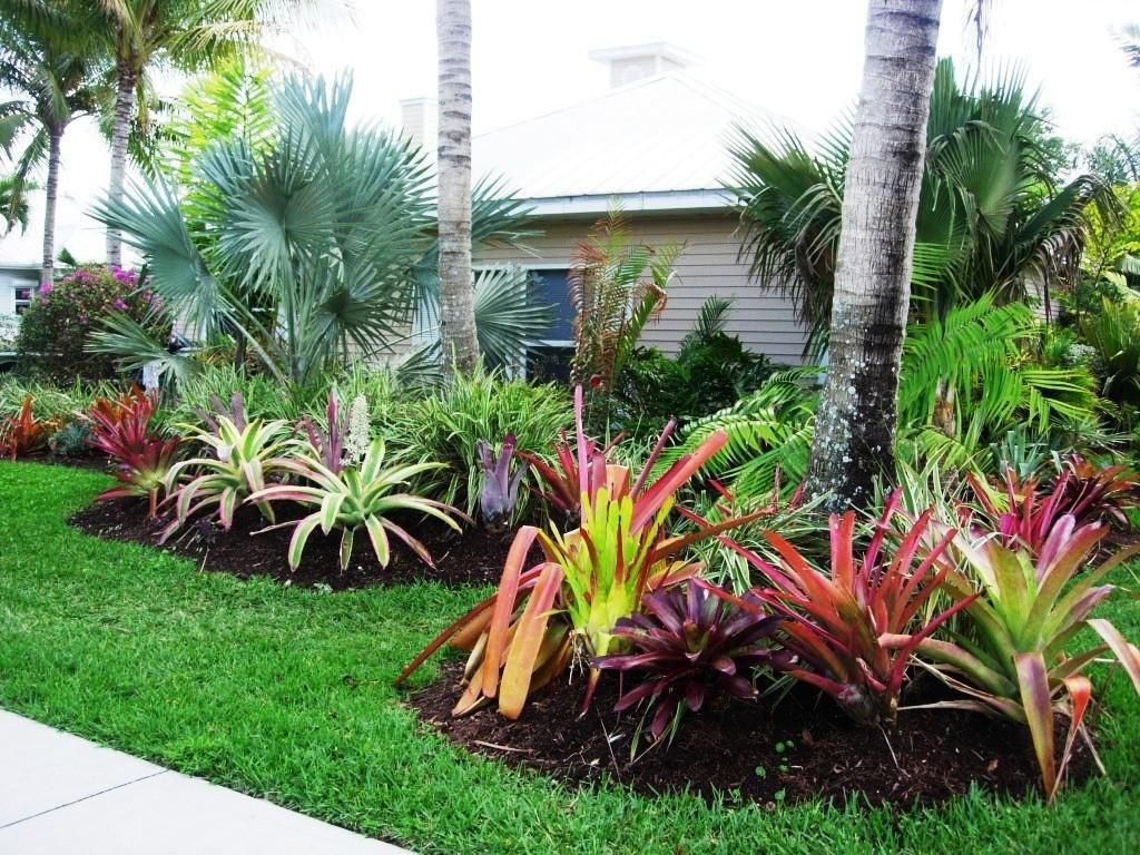 Low Water Landscaping Designs | Beach gardens | Pinterest ...
