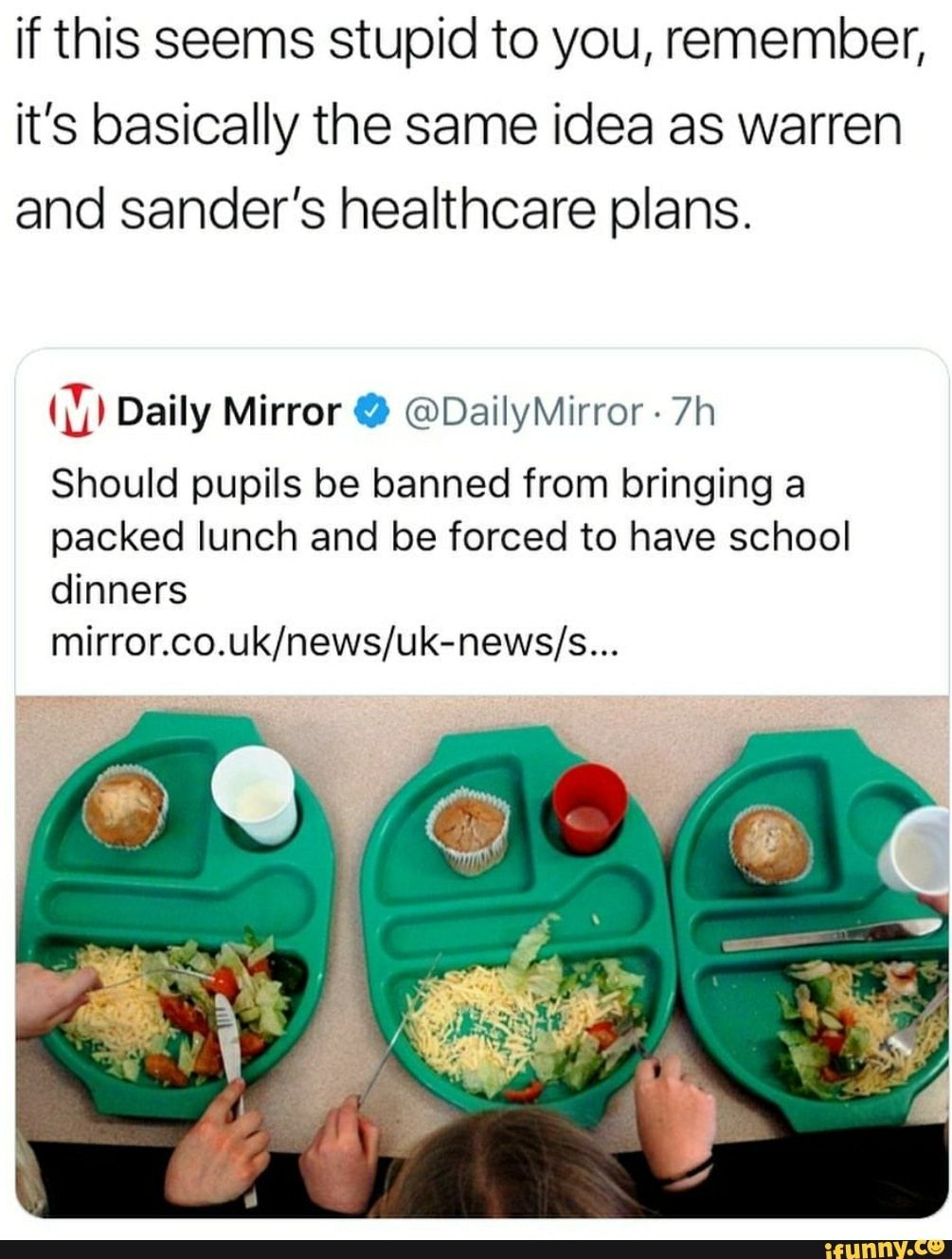 If This Seems Stupid To You Remember It S Basically The Same Idea As Warren And Sander S Healthcare Plans D Daily Mirror 0 Dailymirror 7h Should Pupils B Healthcare Plan Funny