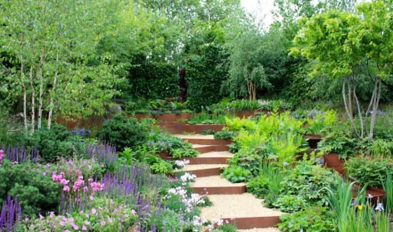 immergrüne-Pflanzen-Hecken-hinten-Sichtschutz Bauliche Ideen
