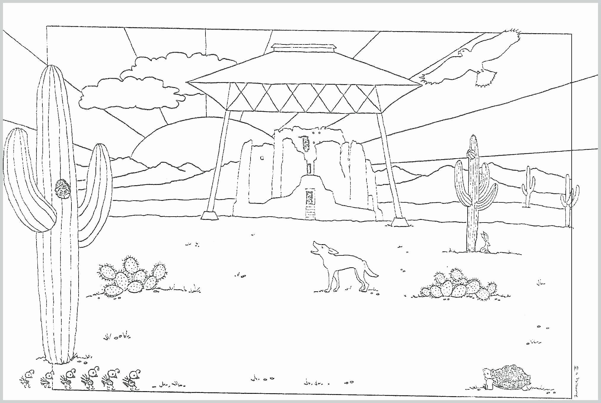 Soccer Field Coloring Pages Awesome Coloring Pages Of Desert