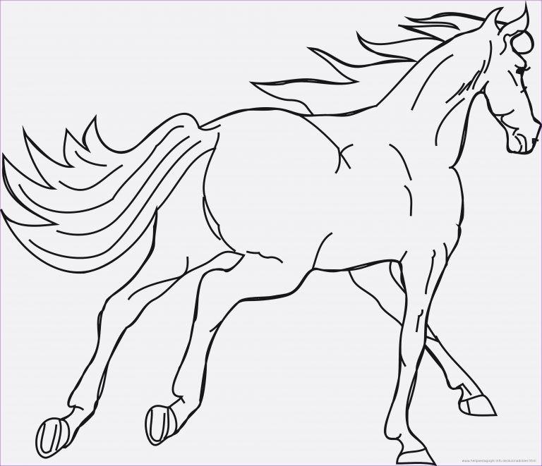 ten beste pferd malvorlage ausdruck 2020 in 2020