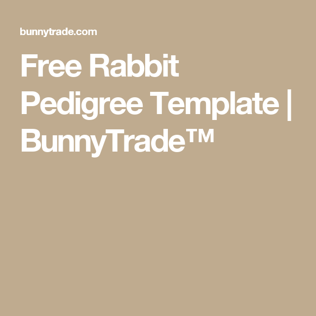 free rabbit pedigree template bunnytrade rabbits pinterest