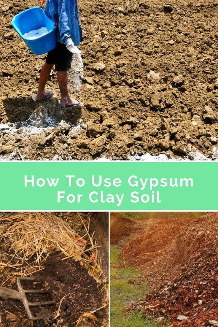 Know How To Use Gypsum For Clay Soil Clay Soil Clay Soil Plants