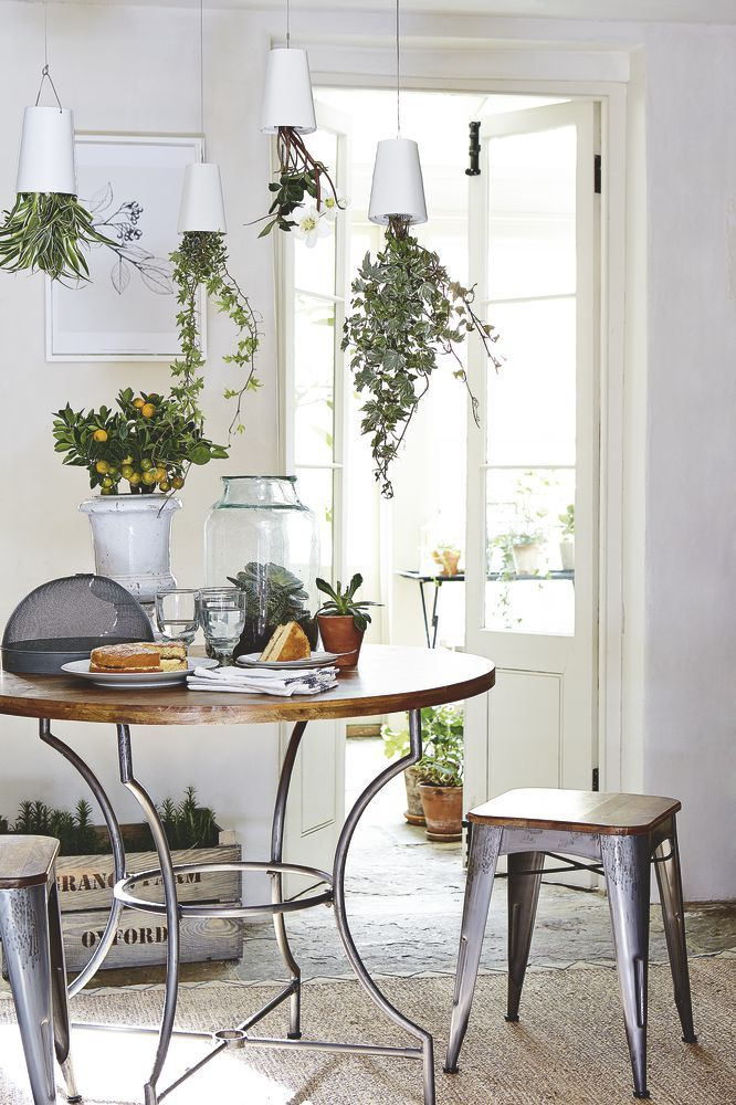 Hanging plants above a dining table is an innovative way to ...