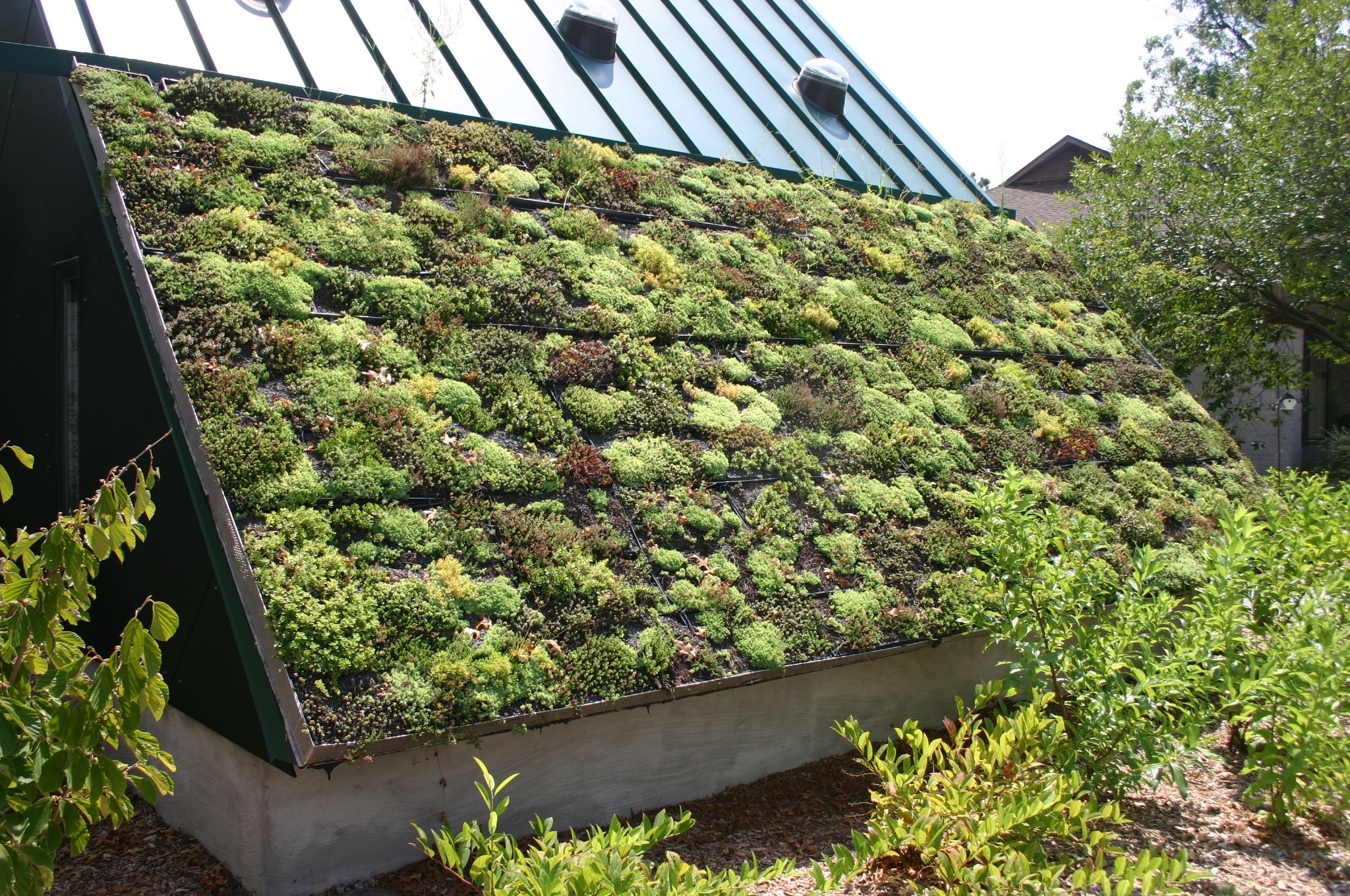 Garden: Green Roof For Your Home Green Roof Homestay Bali. Green .