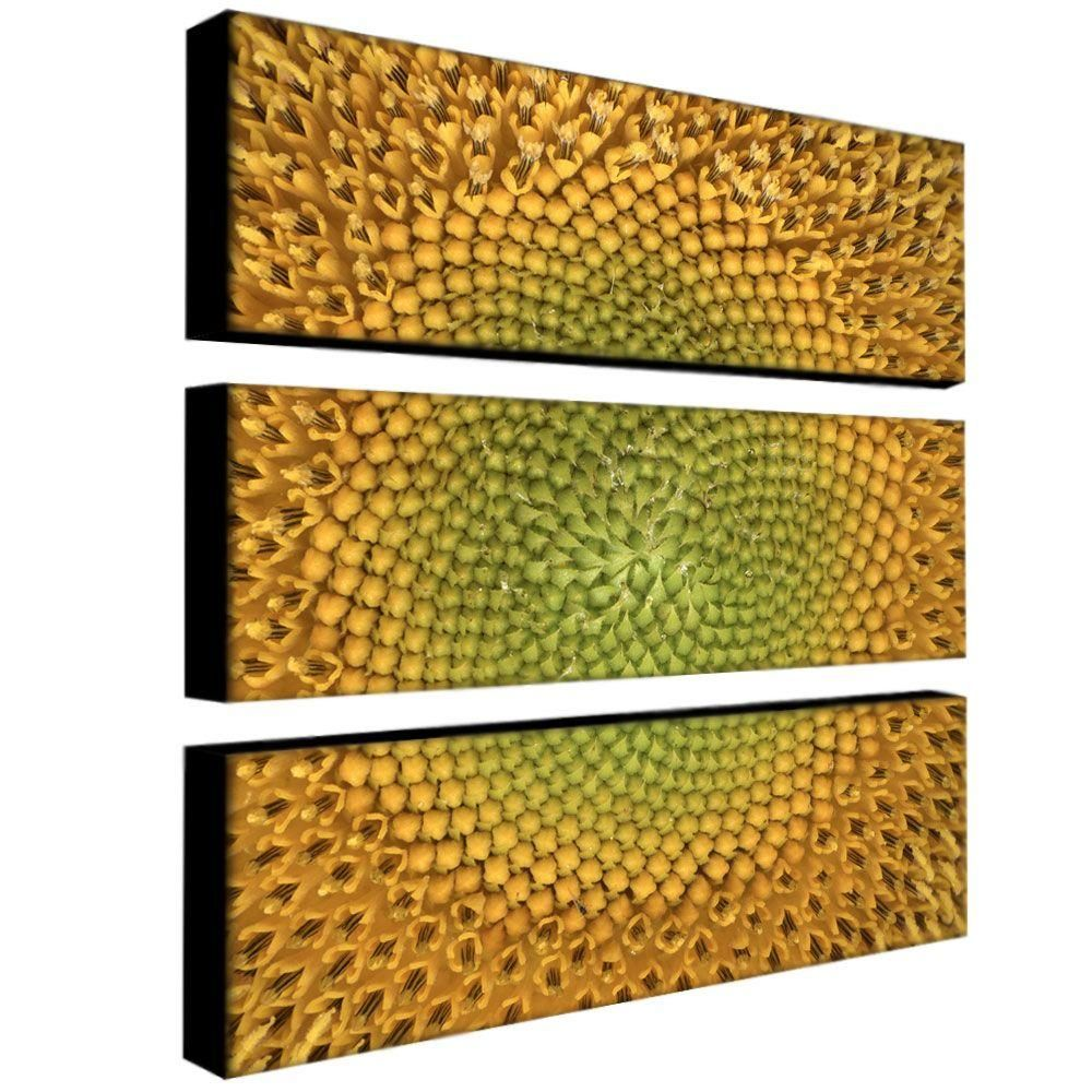 10 in. x 32 in. Sunflower by Aiana 3-Piece Canvas Art Set ...