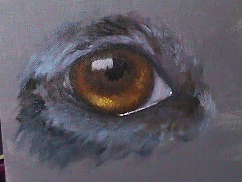 How To Paint A Realistic Dog Eye In Watercolor Youtube Dog