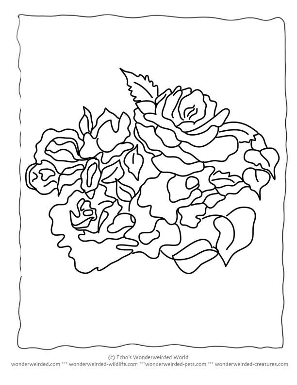 Flower coloring sheets a zfree printable flower coloring pages