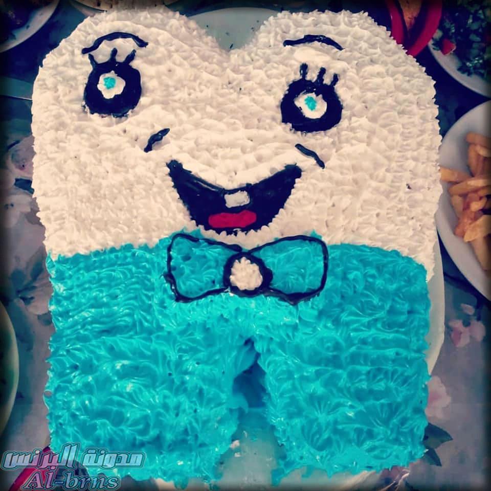 اشكال كيك عيد ميلاد جديدة Birthday Cake Birthday Character