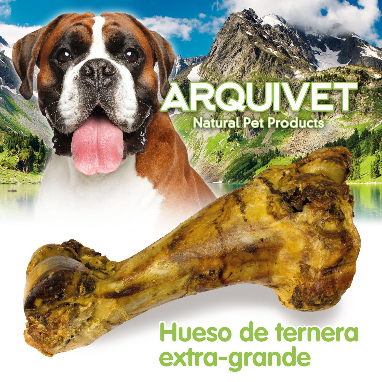 Hueso De Ternera Extra Grande Ternera Productos Para Perros Perros