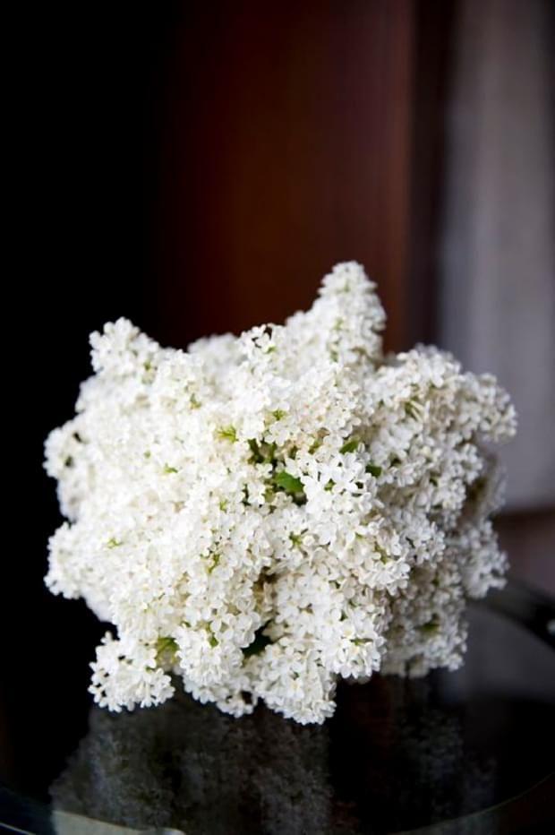 Bukiet Slubny Z Bialego Bzu Zrodlo Bridesinbloom Com Au Flower Bouquet Wedding Lilac Bouquet Wedding Bouquets